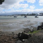 View from Ferry Landing to Whitianga