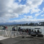 The Ferry over to Whitianga