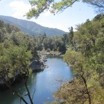 Pelorus and Rai Rivers