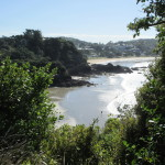 View of Oneroa and Little Oneroa at Low Tide