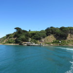 Somes Island in Wellington Harbour